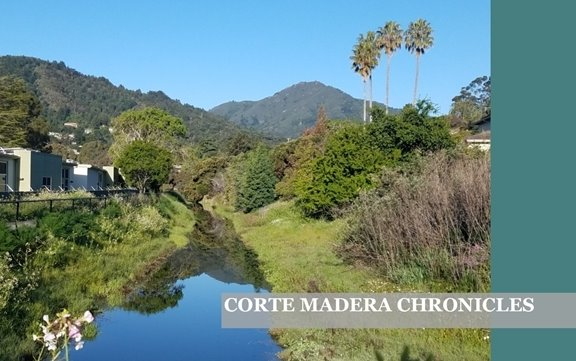Corte Madera Chronicles: The Town of Corte Madera's Newsletter